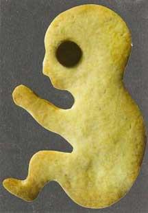 Fetus Cookie